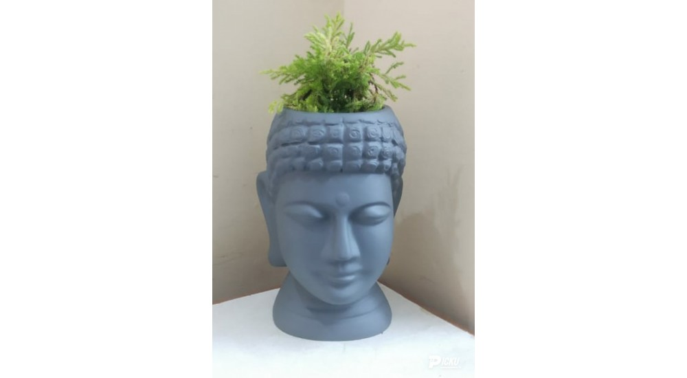 FRP Budha decor & Planter - LP103 - Best Planters