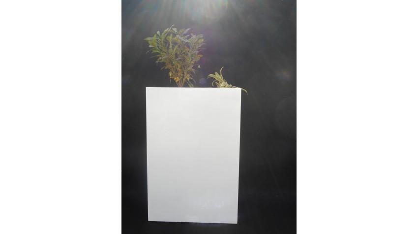FRP Rectangle Long decor & Planter - LP8 - Best Planters