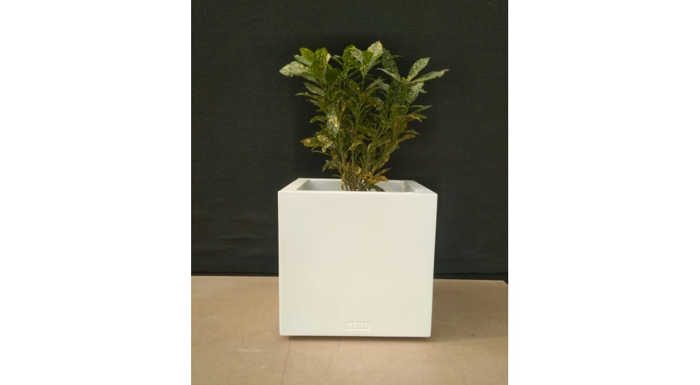 FRP Stone Textured Cube decor & Planter - LP14 - Best Planters