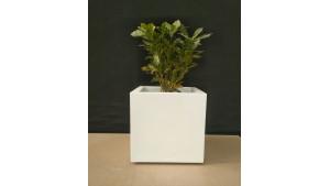 FRP Stone Textured Cube decor & Planter - LP14 - Best Planters