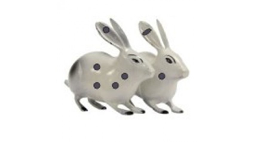 Brass Rabbit Pair